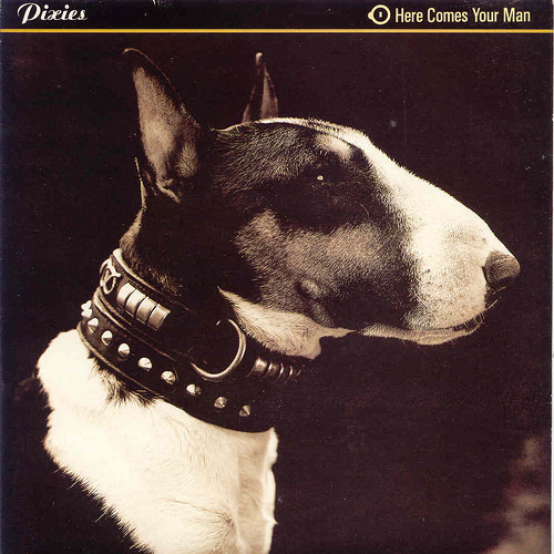 8.2 pixies - here comes your man