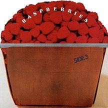 11.27 side 3-by-raspberries