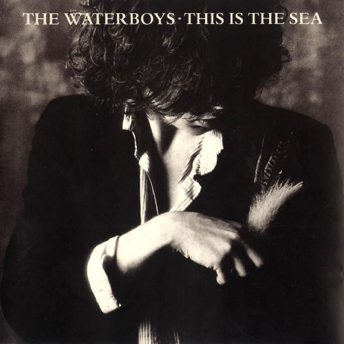 4.10 waterboys - this is the sea