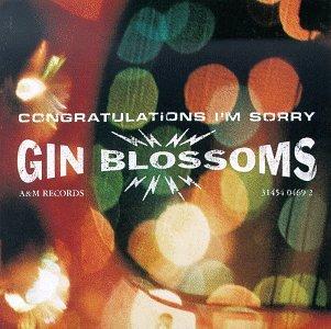 7.3 Gin Blossoms - Congratulations I'm Sorry