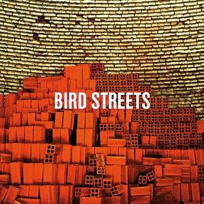 12.17 49.Bird Streets