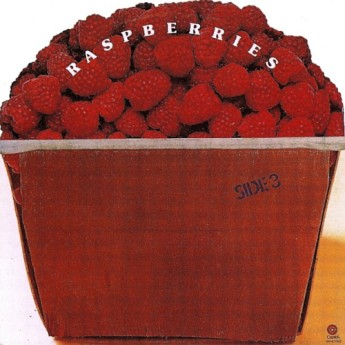 6.4 raspberries - side 3