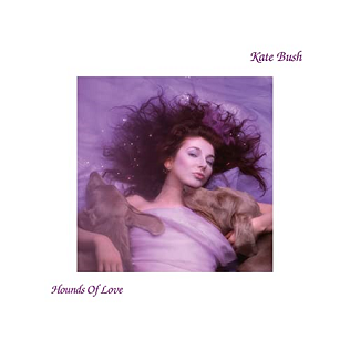 8.20 Kate Bush - Hounds of Love