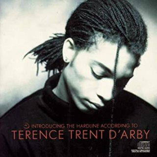 8.27 Terence Trent D'Arby - Introducing the Hardline According to Terence Trent D'Arby
