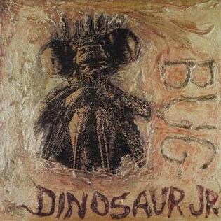 8.31 Dinosaur Jr. - Bug