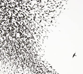10.13 Wilco - Sky Blue Sky